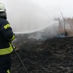 Brand, Schilfgürtelbrand, 24.03.2015